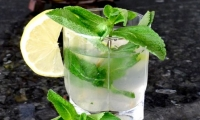 Chill-out mojito at Villa Dinari, Marrakech