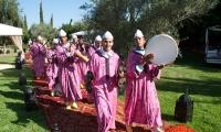 Entertainers at a Villa Dinari wedding