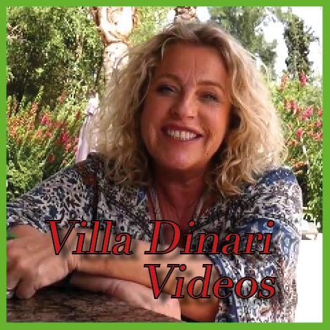 Villa Dinari Videos from the luxury villa in Marrakech